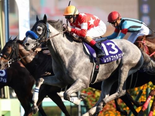 【高松宮記念】枠順確定 昨年の最優秀短距離馬レッドファルクス3枠6番、昨年の覇者セイウンコウセイ1枠1番