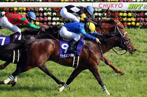 【競馬】ファインニードル 香港G1チェアマンズスプリントプライズ参戦を受諾、鞍上は調整中