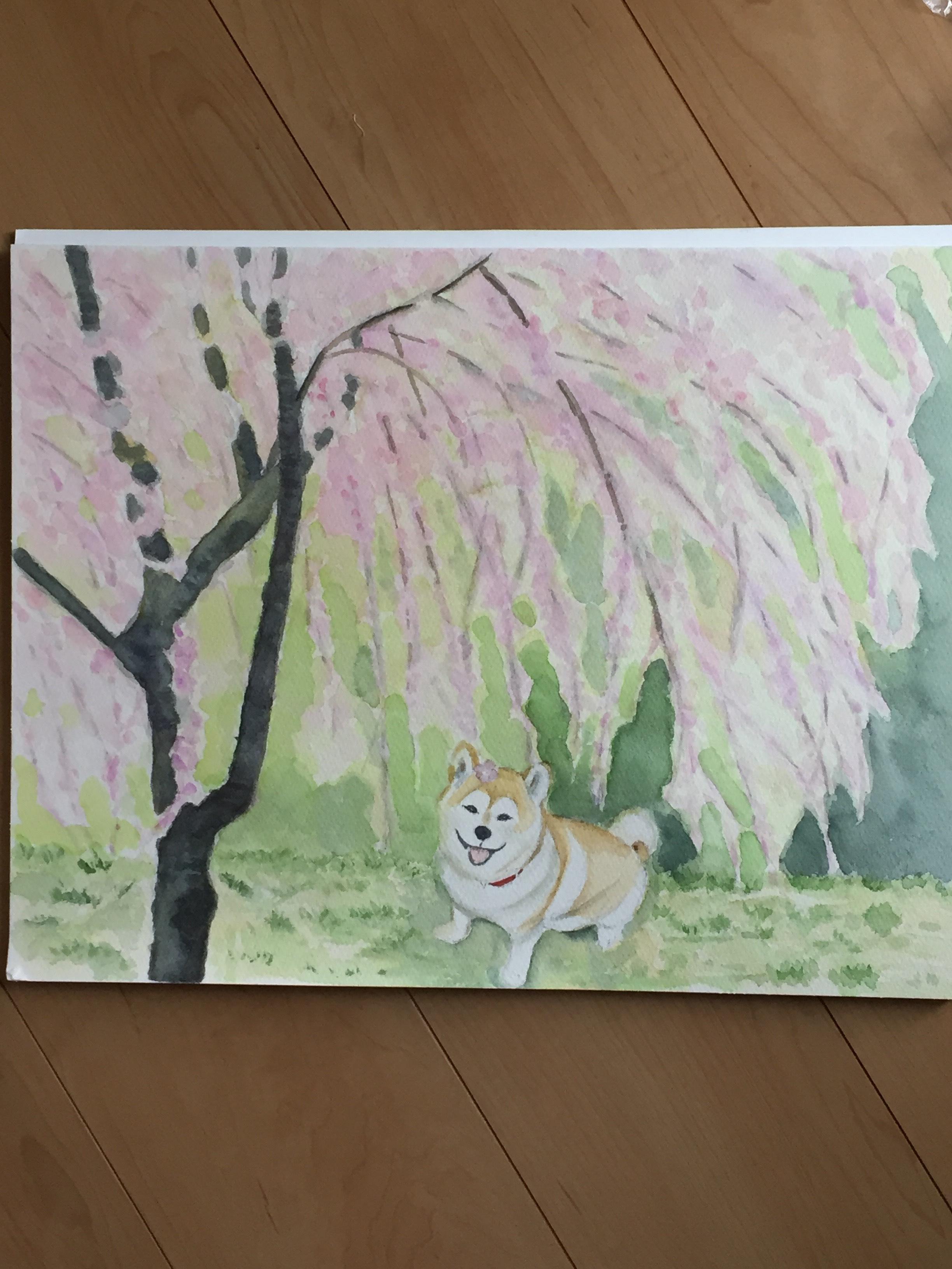 モモちゃん桜の下で