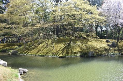 仙洞御所庭園-中島