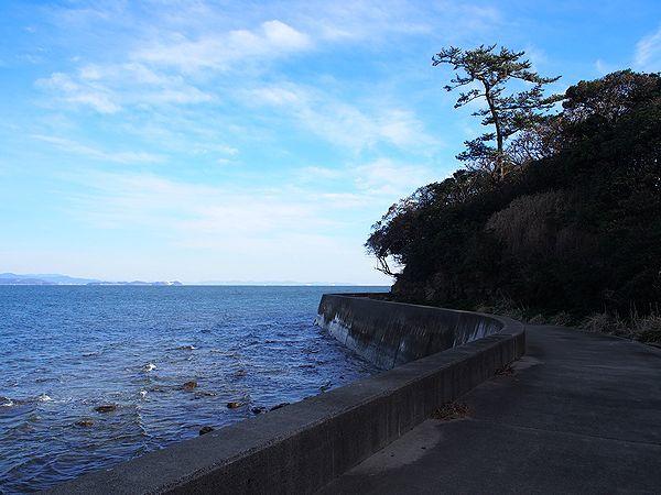 佐久島北海岸の道