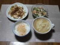 2/19 夕食 メカジキのガーリック炒め、ギョーザ入りスープ、シーフードサラダ、鮭フレークご飯