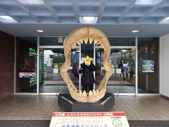 3/10 油壷マリンパーク  水族館入り口のサメの歯