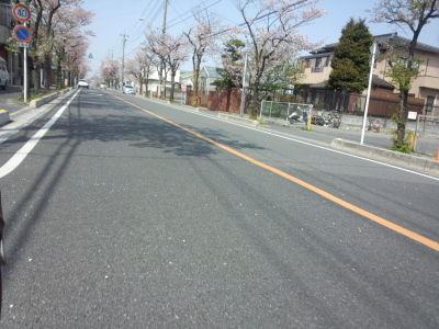 photo_derosa_sakura_minuna_0401_9_2018_0401.jpg