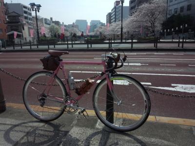 photo_derosa_tonainosakurameguri_2018_12_2018_0327.jpg