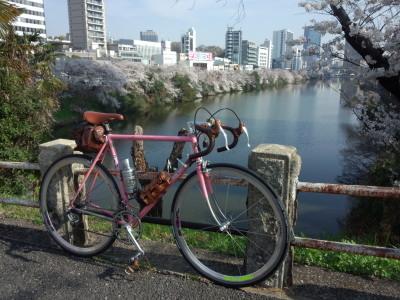 都内桜巡り