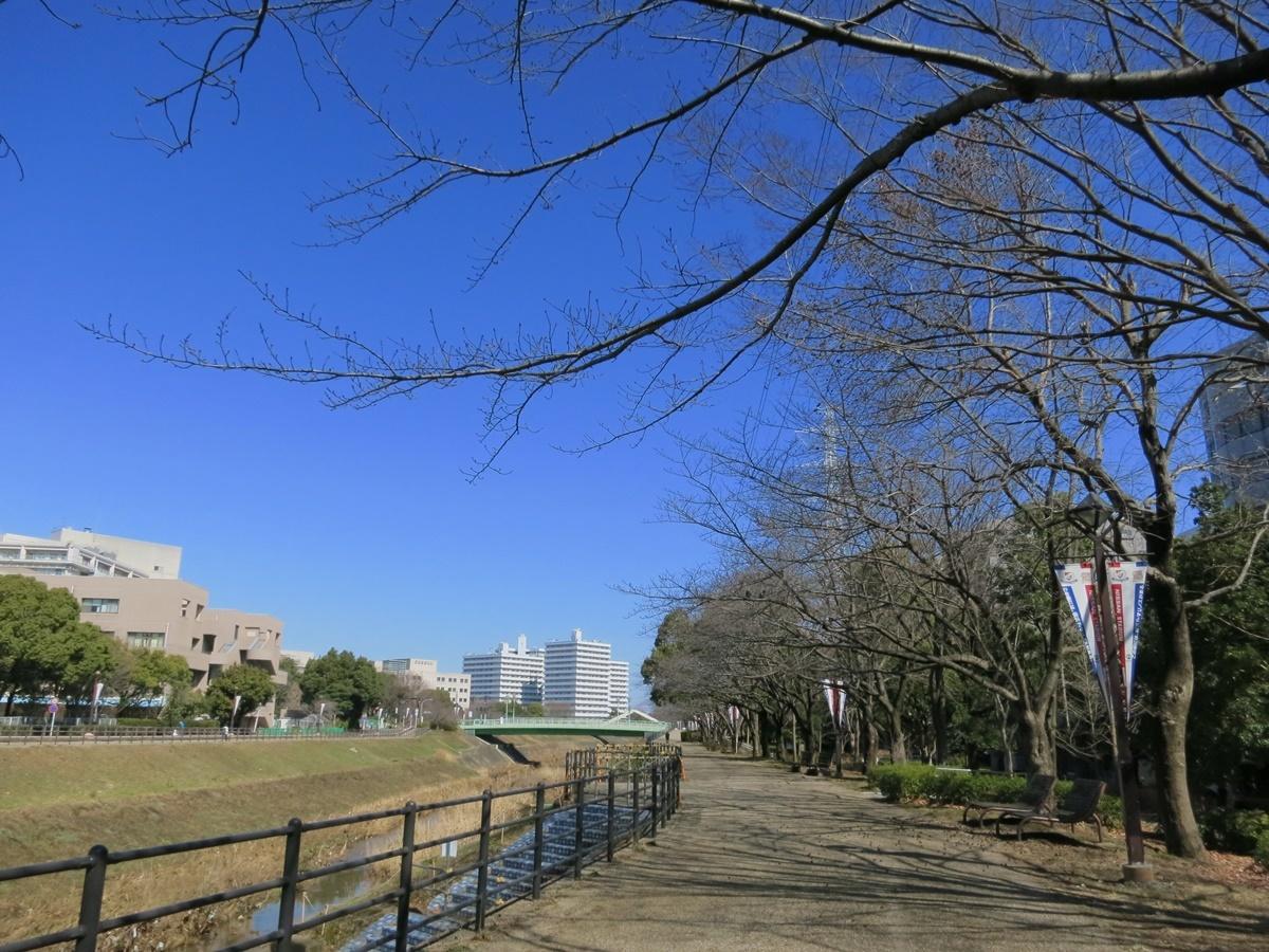 180301鶴見川-04