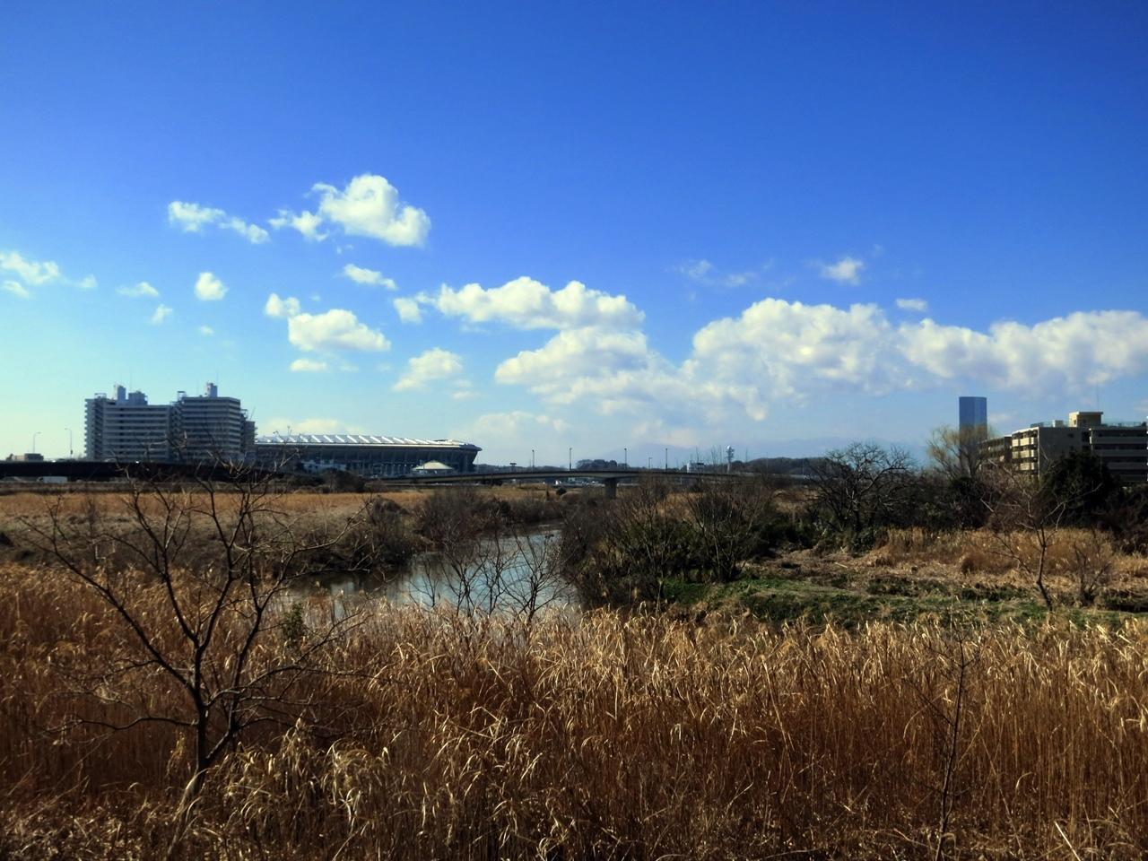180301鶴見川-08