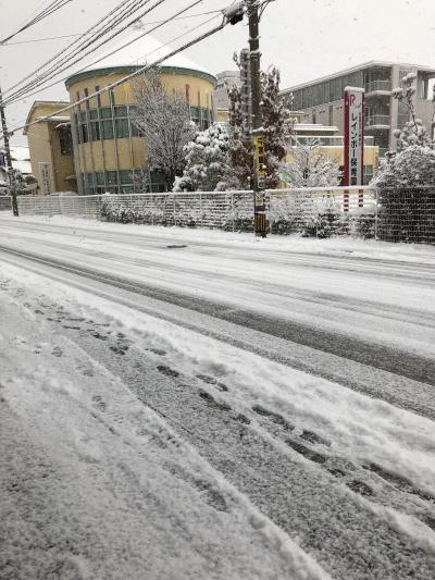 雪IMG_0001