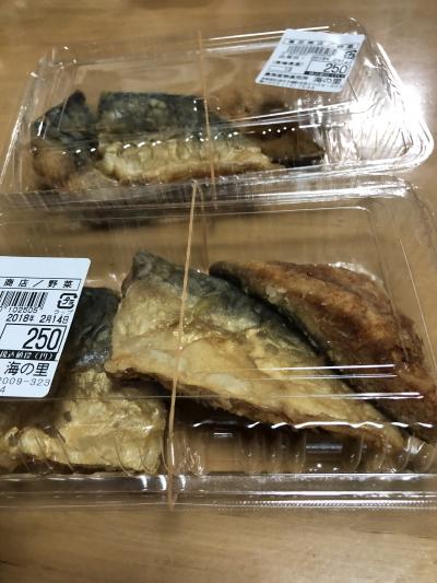 魚魚IMG_0005