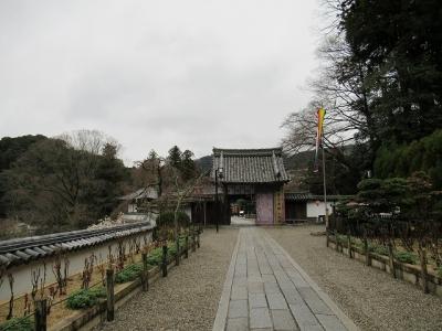 長谷寺・本坊への参道