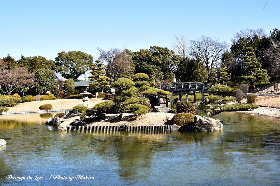 庭園56D1