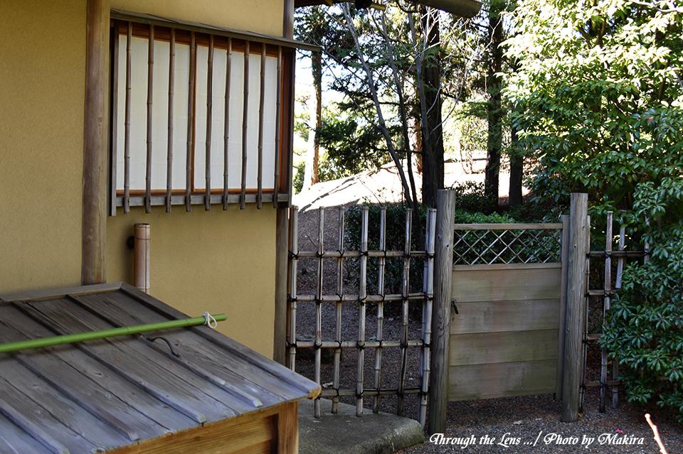庭園56D10