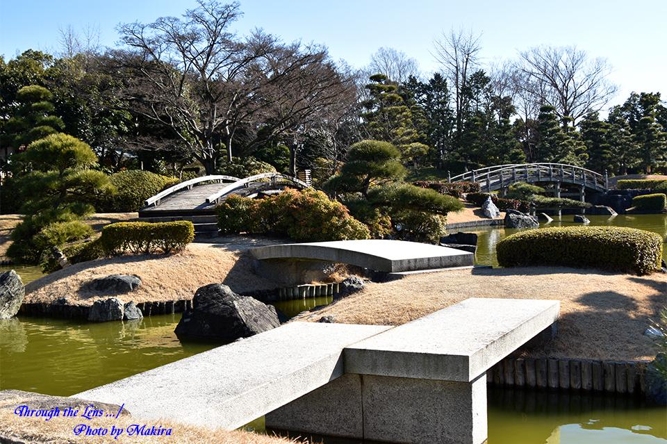 庭園56D11