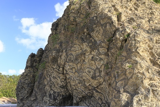 枕状溶岩1