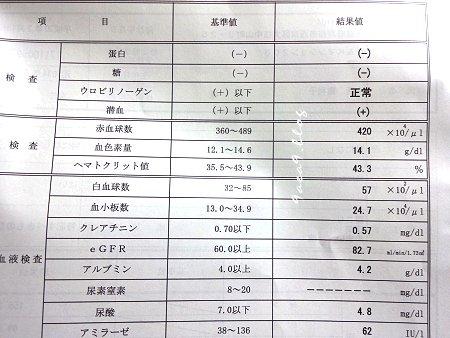 健康診査受診結果通知表の画像 2