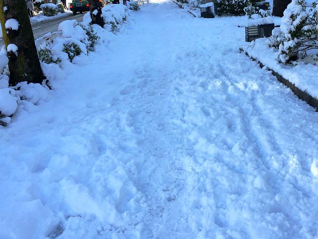 大雪の東京街中1 by占いとか魔術とか所蔵画像