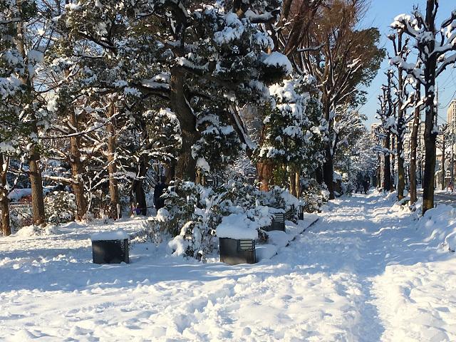 大雪の東京街中2 by占いとか魔術とか所蔵画像