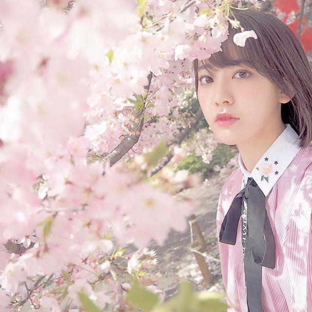 千鳥ヶ淵 宮脇咲良 2018 桜 1