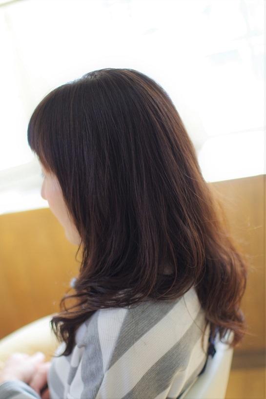 IMGP9671 (2)
