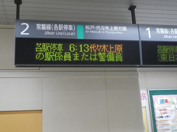 P1360387.jpg