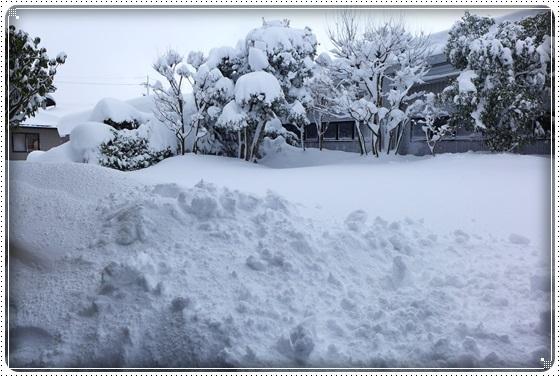 2018.2.8雪4