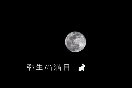yayoi_moon.jpg