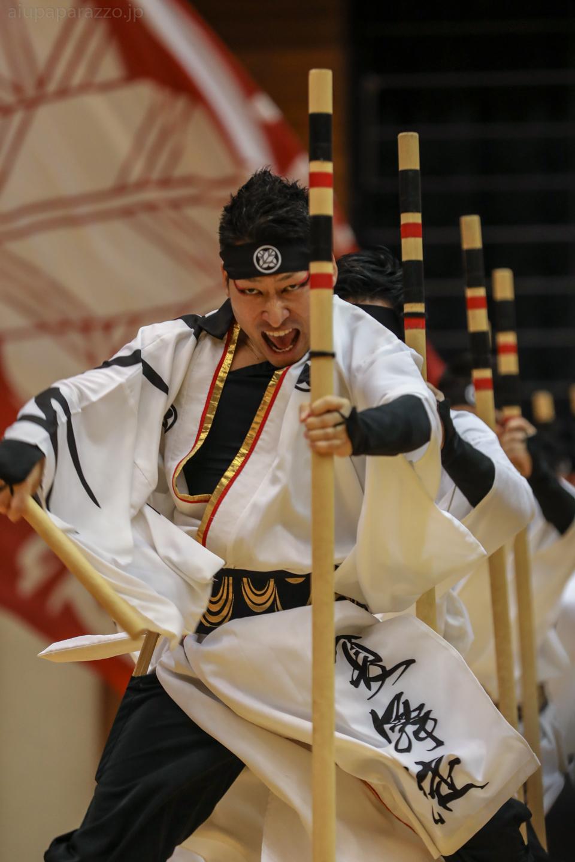 kabuto2018hakusai-10.jpg