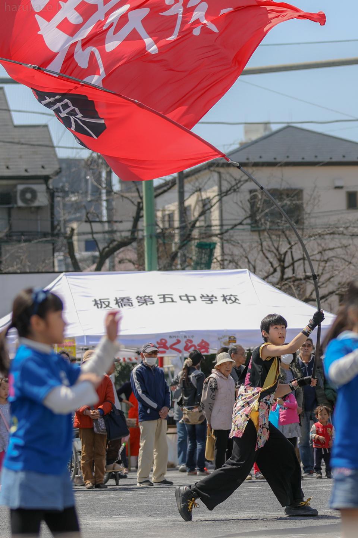 sk20180325sakura01-34.jpg