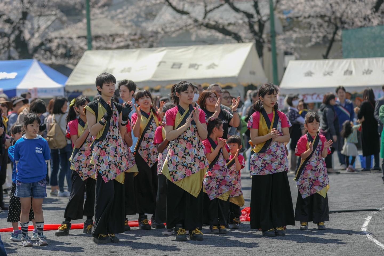 sk20180325sakura02-27.jpg