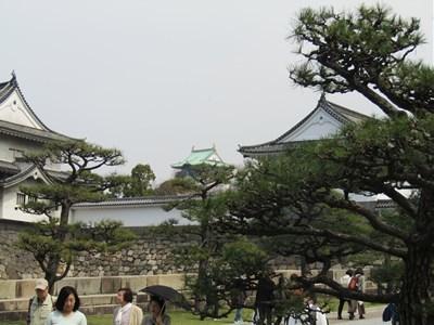 s-2018年大阪城桜②