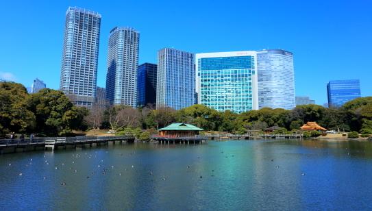 潮入の池に映える中島茶屋と高層ビル