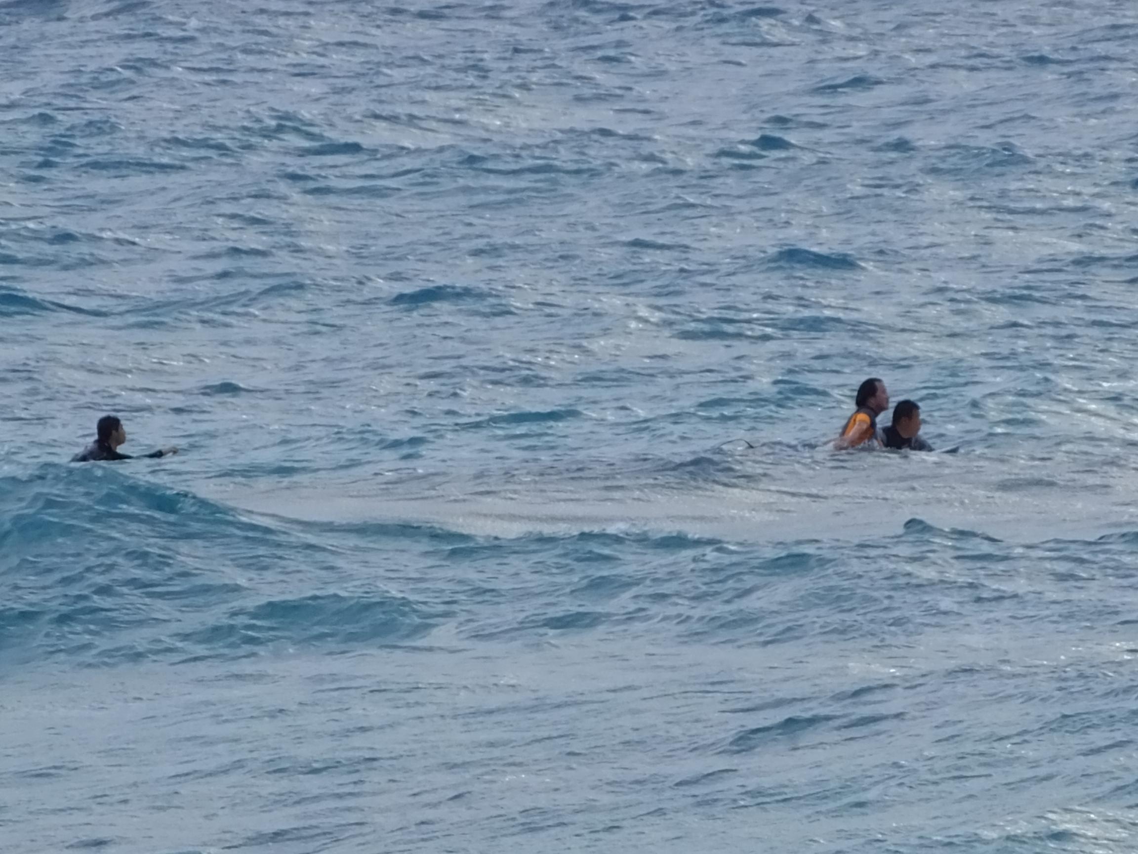 龍郷町手広海岸でサーフィン