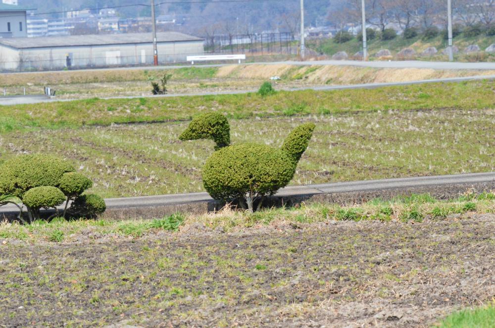 武庫川DSC_0463