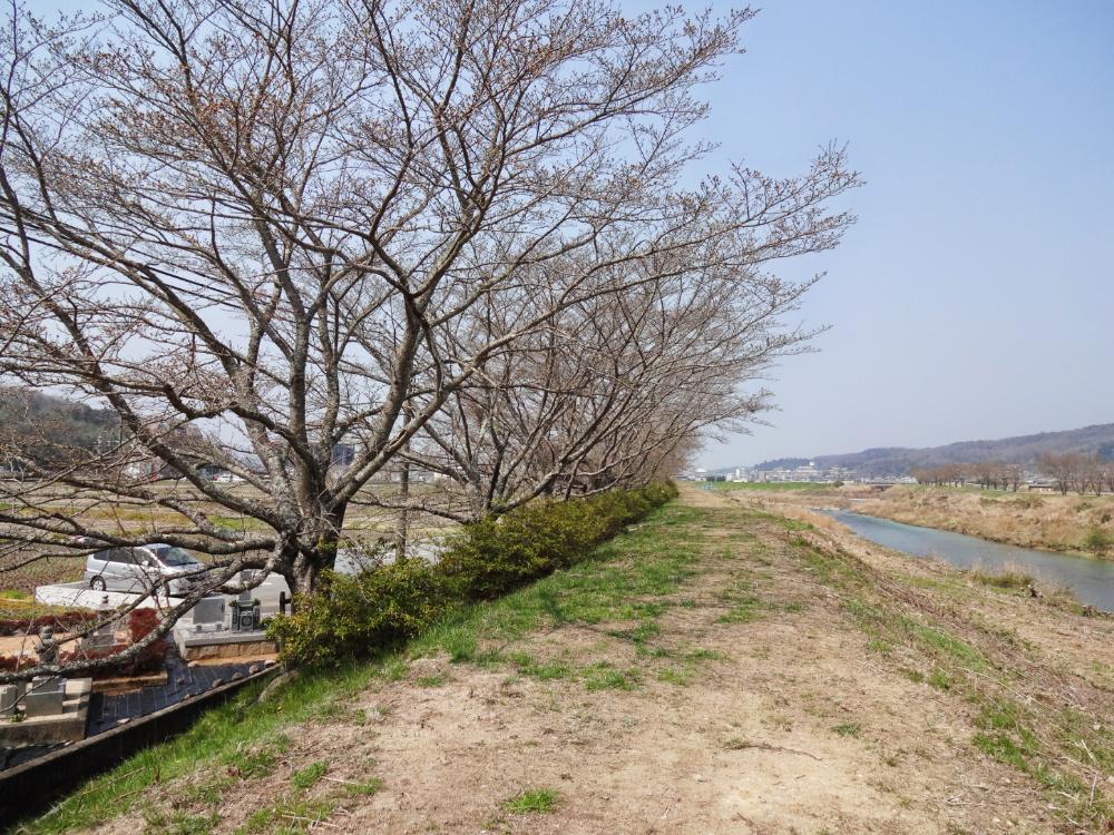 武庫川DSC00745