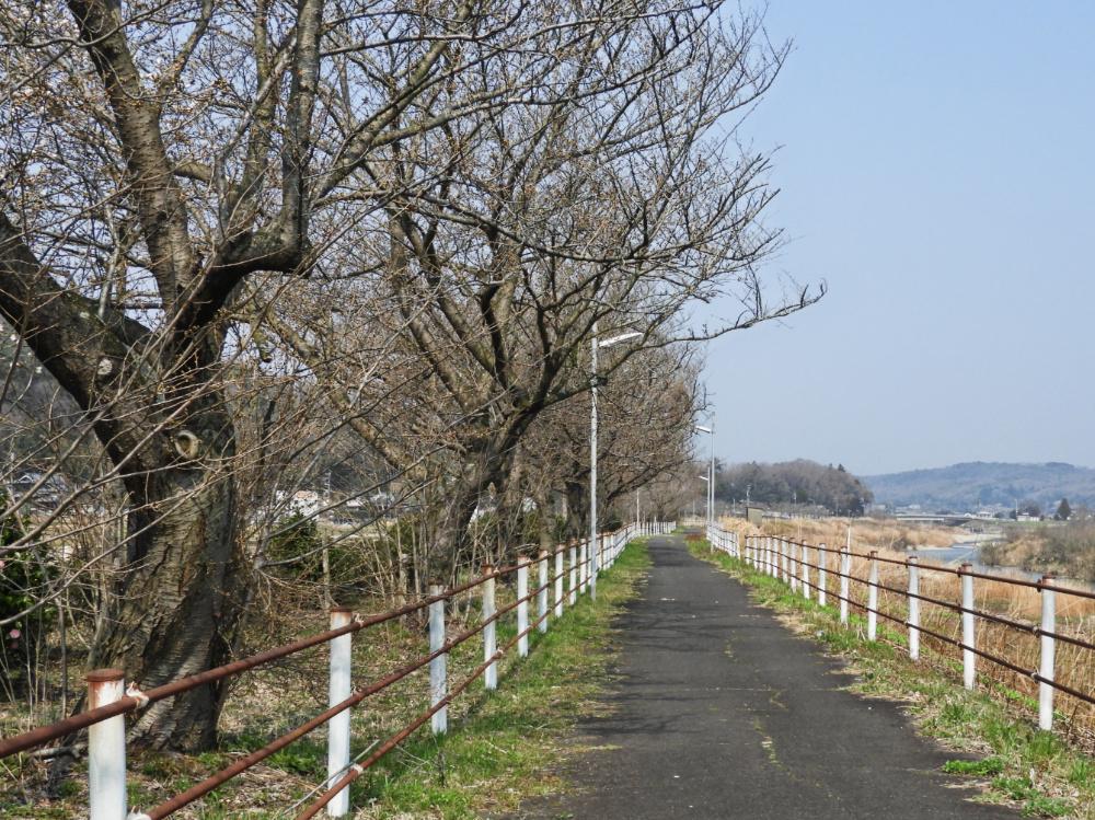 武庫川DSCN7596