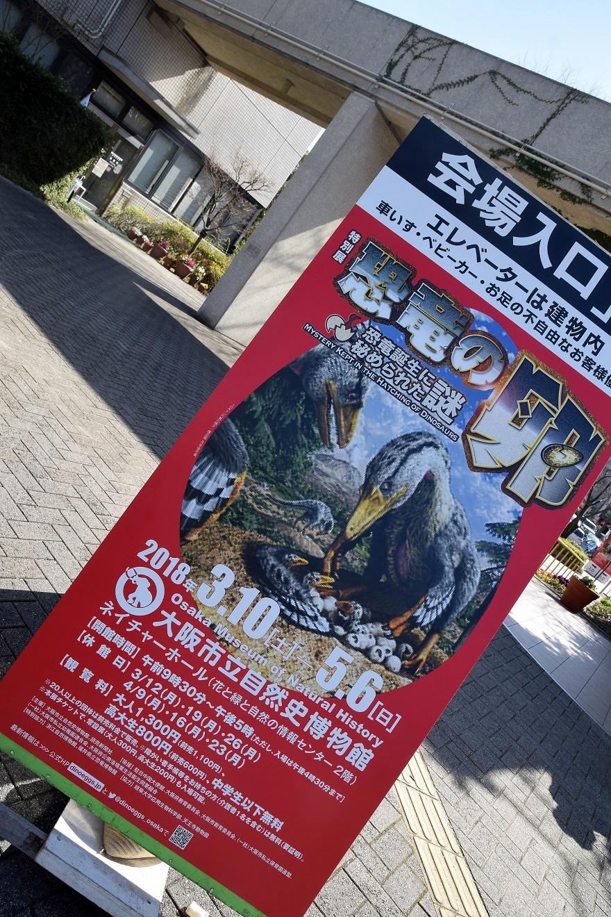 恐竜の卵展 (1)