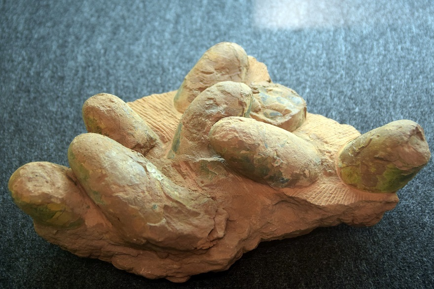 恐竜の卵展 (6)