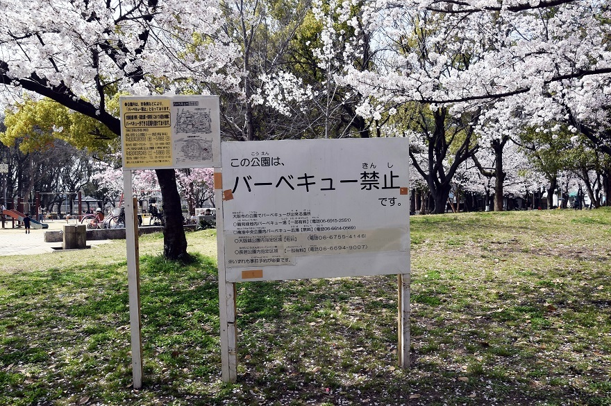 白鷺・桜 (19)
