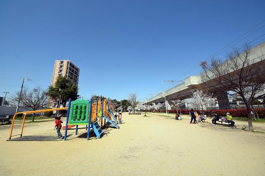長池公園・桜 (15)