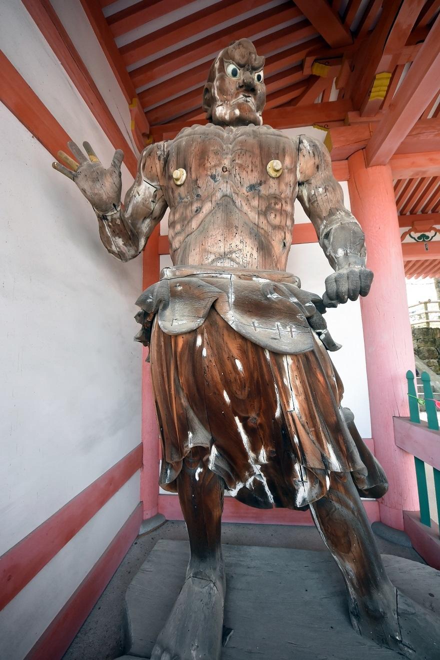壺阪寺大仏桜 (24)
