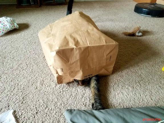 怪奇!妖怪紙袋1