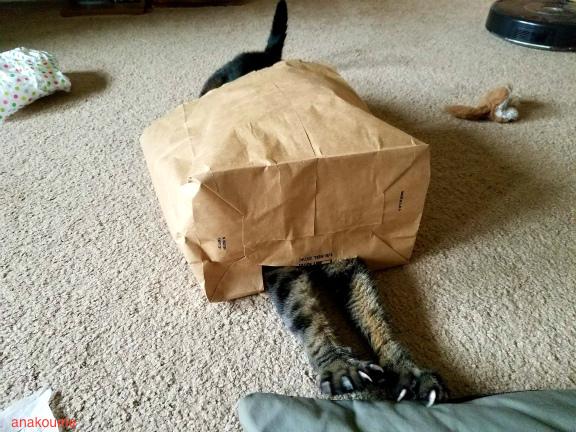 怪奇!妖怪紙袋2