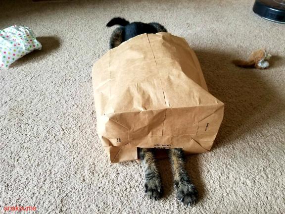 怪奇!妖怪紙袋4
