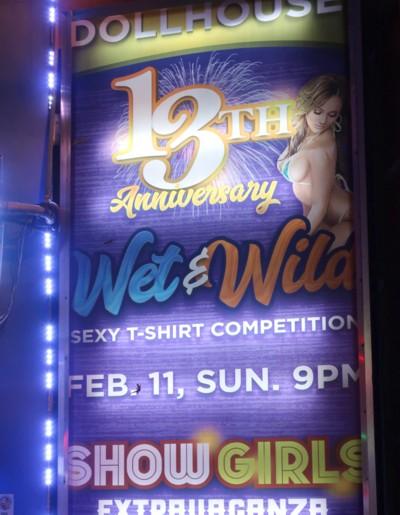 dollhouse 13 annniversary banner (1)