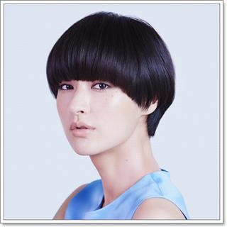 SHISHIDO_KAVKA_shorthair1.png