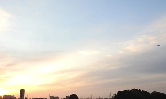 DSCN4672_20180319朝オオハクチョウ1羽_6178