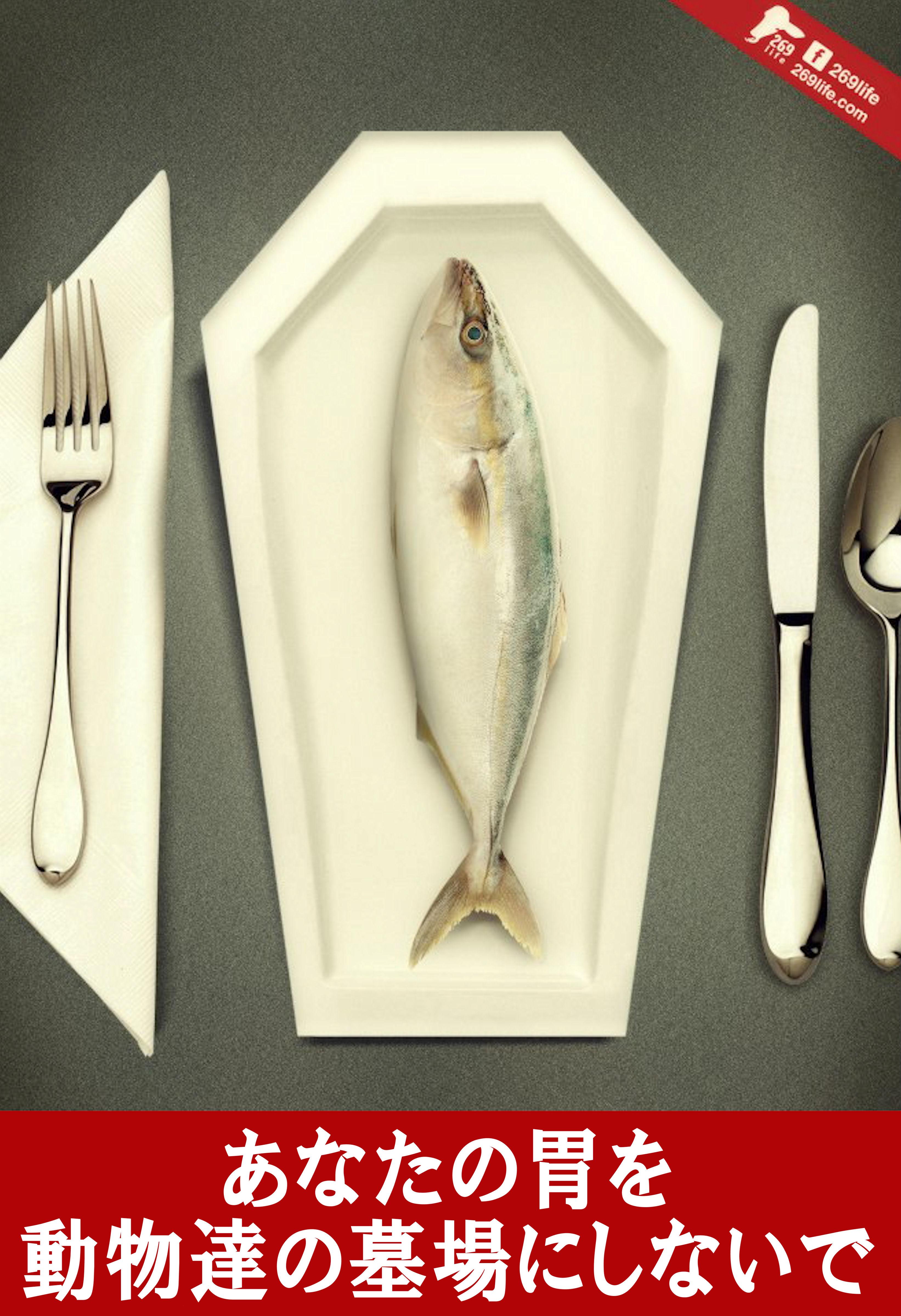 fishlove1.jpg