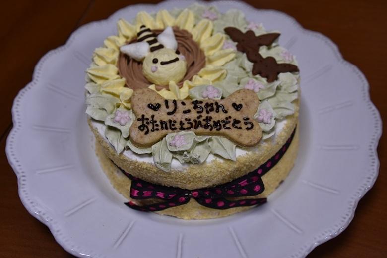 249  ケーキ