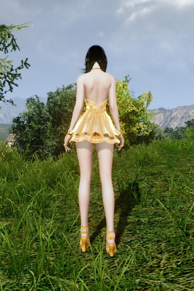 黄金の愛のドレス 背中・変形